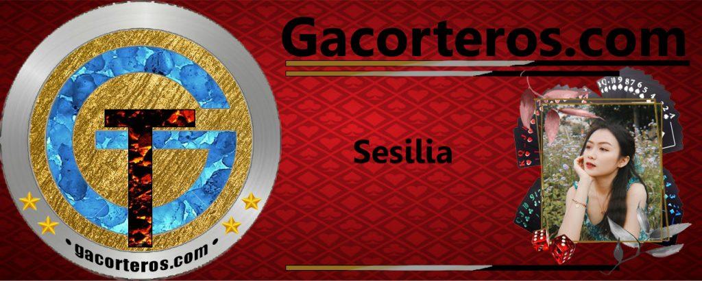 Sesilia gacorteros.com